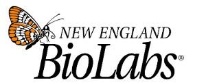 NEB_Logo 300x121px